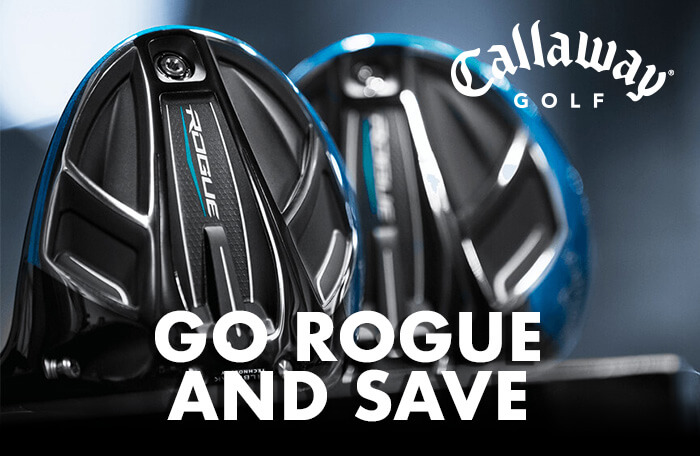 Go Rogue and Save