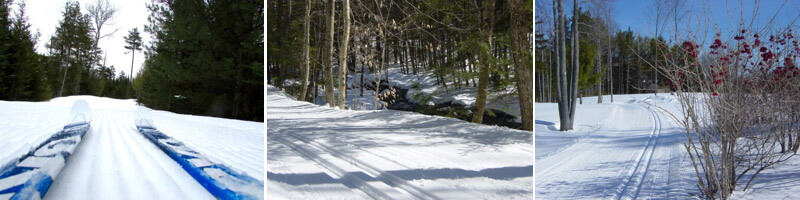 Collection of snow covered cross country trails